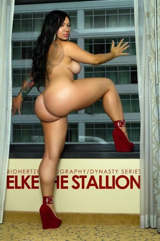 Elke the stallion ass